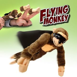 Flying_monkey_center_500_92119